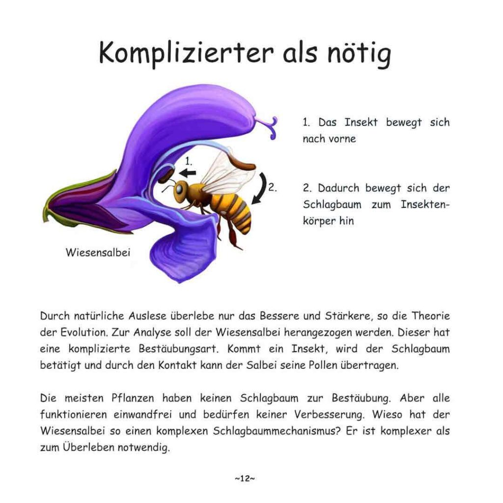Seite 12 von Buch: Darf Evolution in Frage gestellt werden?