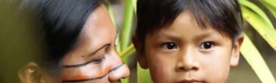 5.bioteeny Kinderstunde – Wächter des Waldes
