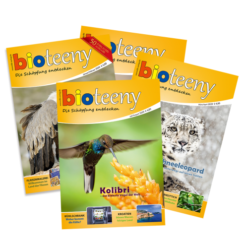 Bioteeny Zeitschriften